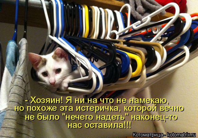 kotomatritsa_1T (640x446, 330Kb)