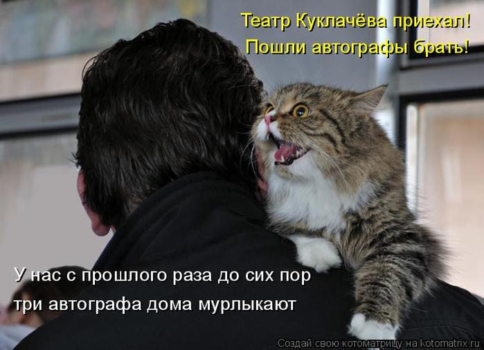 kotomatritsa_Nz (700x505, 269Kb)