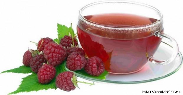 tea-2-620x322 (620x322, 79Kb)