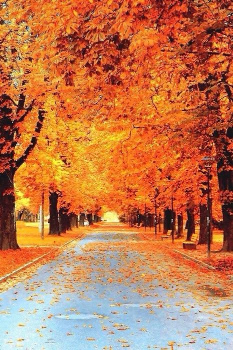 Осень в городе (466x699, 432Kb)