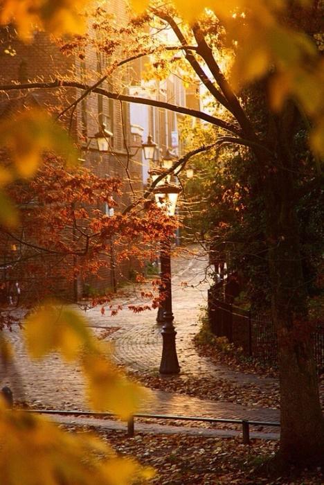Осень в городе2 (468x700, 320Kb)