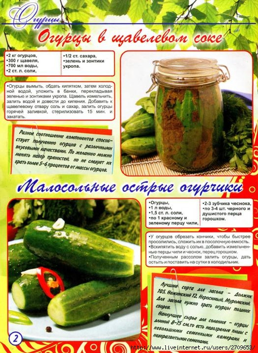 Засолка огурцов зиму рецепты фото