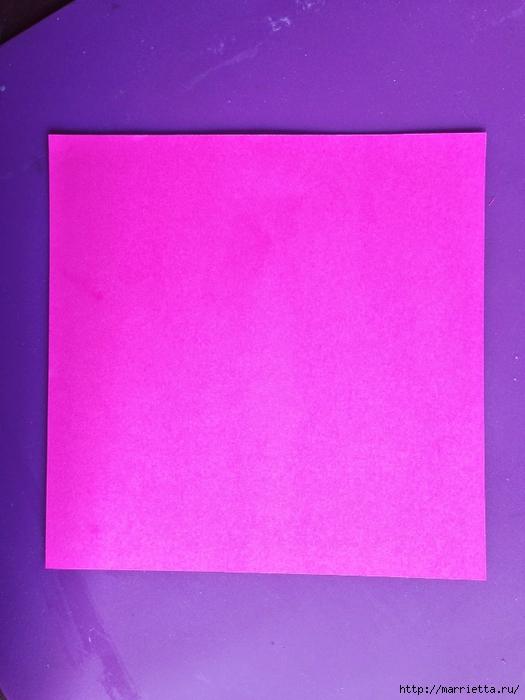 Цветы из мешковины - Эхинацея Пурпурная. Мастер-класс (3) (525x700, 234Kb)