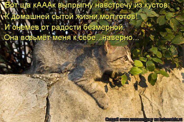 1410117556_05 (700x467, 382Kb)