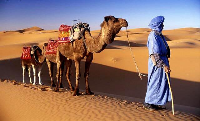 Отдых в Марокко. Бронирование отелей и туры от morocco.coral.ru (11) (640x389, 211Kb)