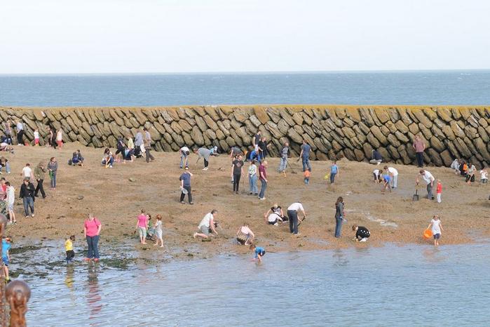 золотой клад на пляже в городе Фолкстон 1 (700x466, 336Kb)