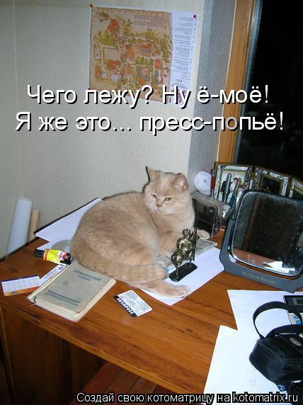 kotomatritsa_f (428x572, 203Kb)