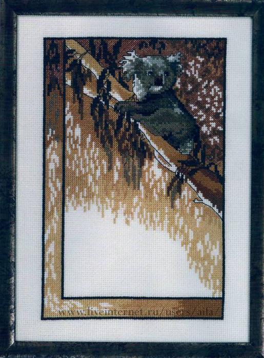 Схема для вышивки коал