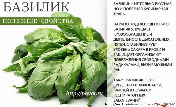 temnokozhie-devushki-s-seksualnoy-popkoy