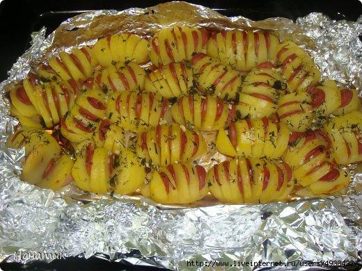 Картошка гармошка рецепт с фото с сыром