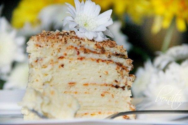 Торт, (604x403, 48Kb)