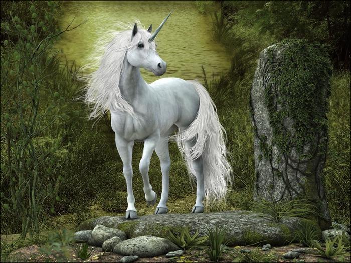 mystic_animals_10 (700x525, 339Kb)