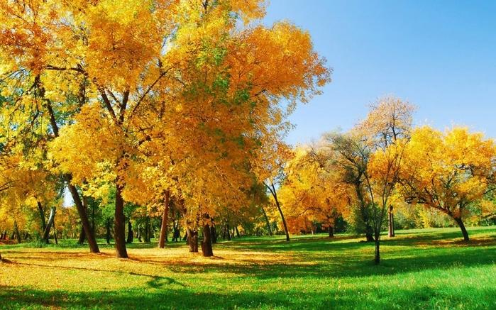 Картинки русское поле осенней ночью