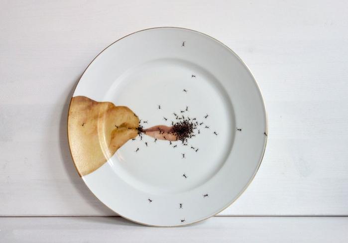 посуда с муравьями Эвелин Баклоу 2 (700x488, 202Kb)