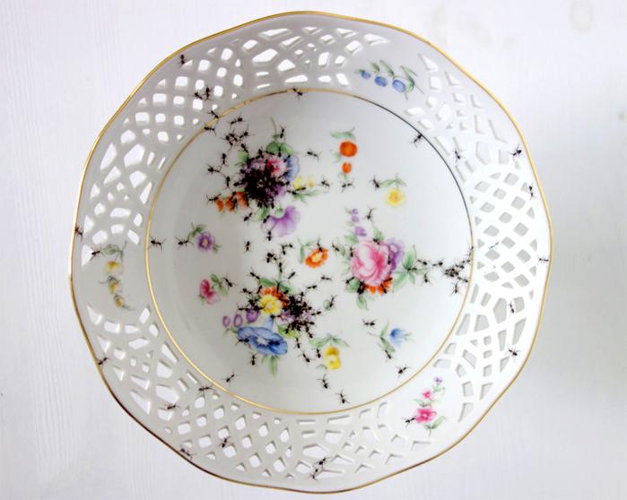 посуда с муравьями Эвелин Баклоу 6 (700x558, 343Kb)
