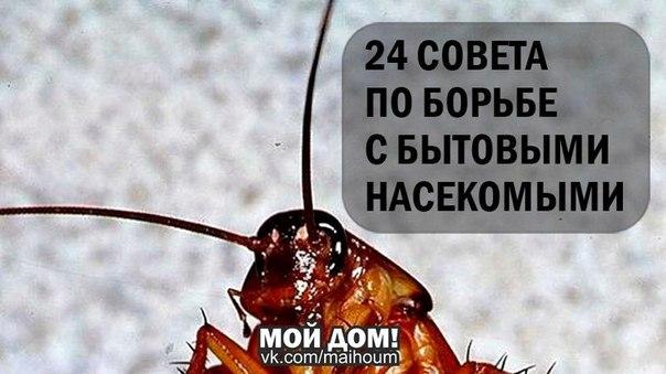 Yo_adIc7Gho (604x339, 49Kb)
