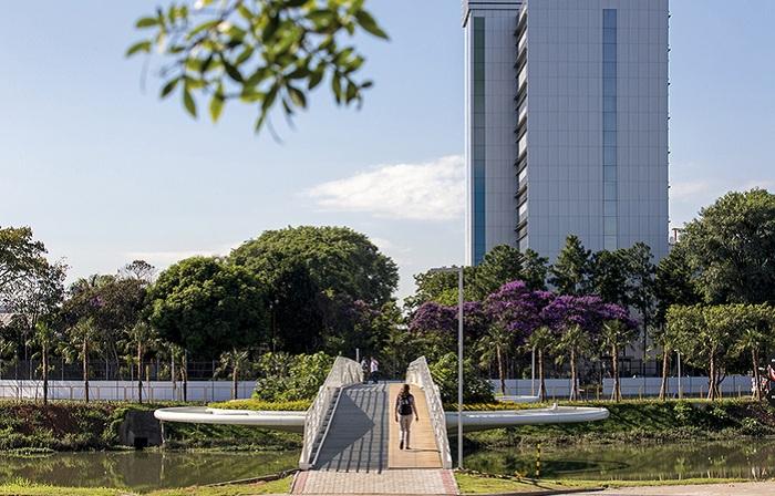 пешеходный мост в сан-паулу фото 4 (700x448, 366Kb)