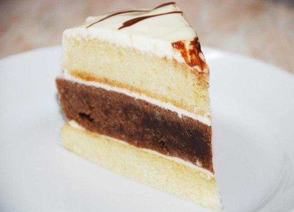 торт (604x435, 30Kb)