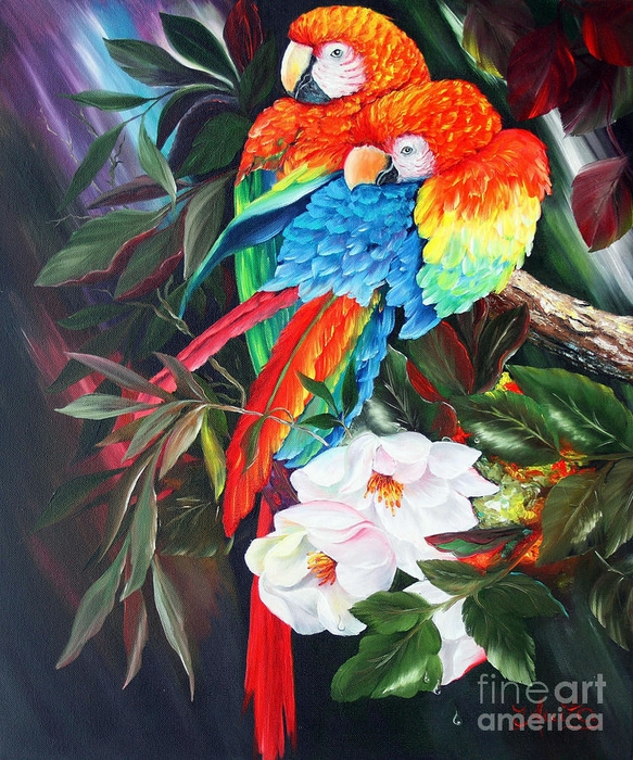 a-couple-of-parrots-ilona-anita-tigges-goetze (583x700, 400Kb)