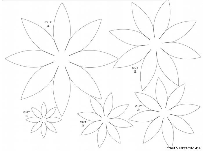 Трафареты цветов для бумажных цветов своими руками