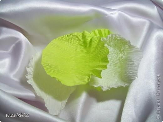 Как сделать из гофрированной бумаги капусту