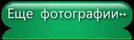 000000 (191x58, 13Kb)