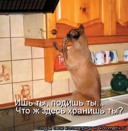 kotomatritsa_7 (450x460, 192Kb)