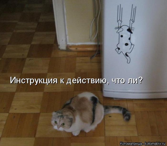 kotomatritsa_u- (700x612, 272Kb)