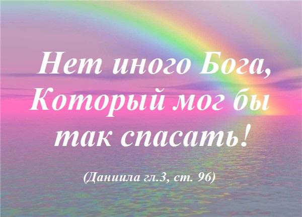 97431604_5152557_rozovaya_radyga.jpg1 (600x431, 72Kb)