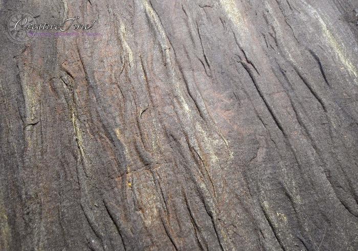 Как можно имитировать древесную кору/1783336_p_txt (700x490, 172Kb)