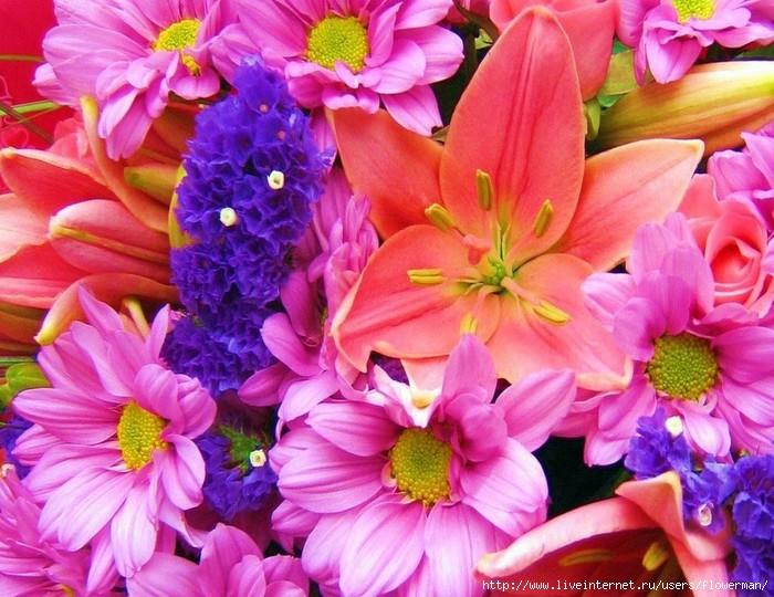cvety-dostavka-cvetov (700x540, 255Kb)