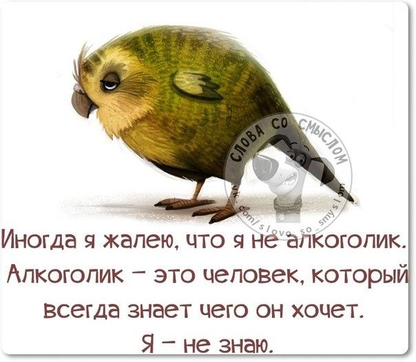 1411671157_frazki-7 (604x525, 197Kb)