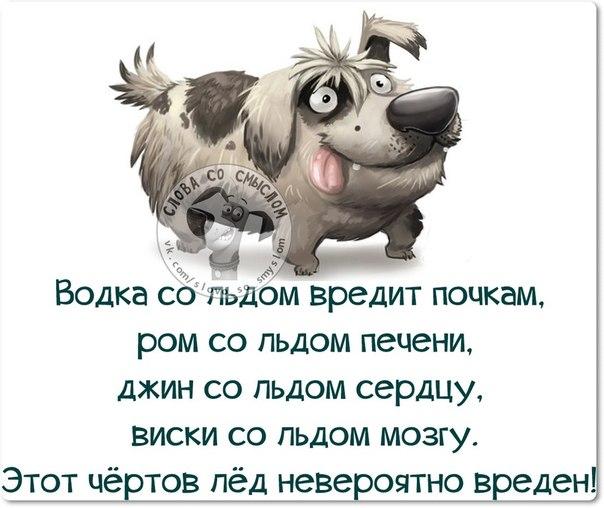1411671206_frazki-6 (604x508, 191Kb)
