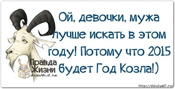 109404458_large_1390331595_frazochki14 (604x307, 113Kb)