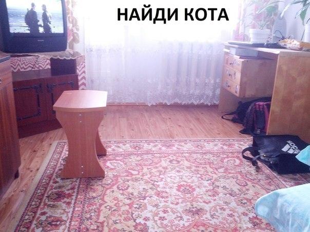 1411743118_vIad88tBmk (604x453, 65Kb)
