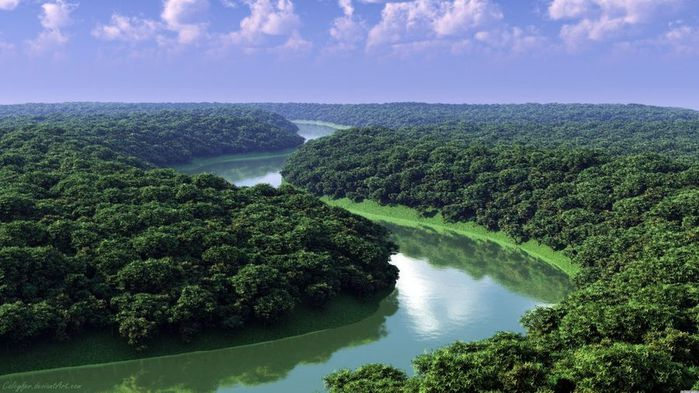amazon_jungle_04 (700x393, 64Kb)