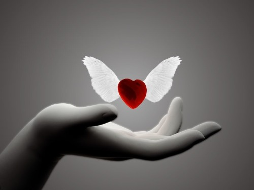 3303834_Heartlove (500x375, 18Kb)