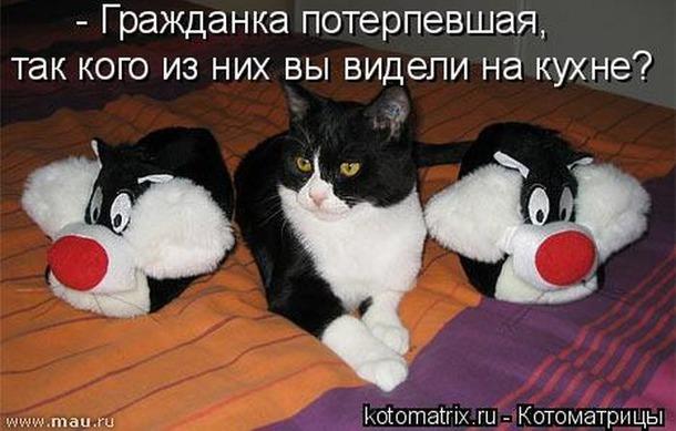 13498557_81332thumb650 (610x389, 208Kb)