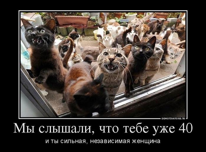 2915870_myi-slyishali-chto-tebe-uzhe-40 (700x518, 208Kb)