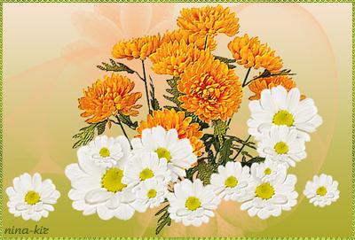 Оранжевые-хризантемы-n (400x271, 205Kb)