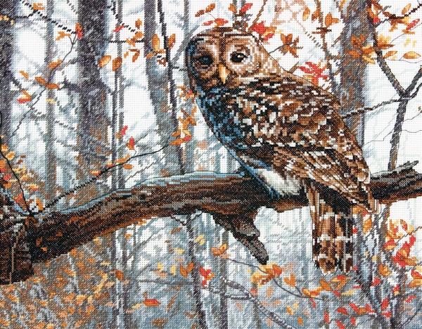 Stitchart-Wise-Owl0 (600x468, 393Kb)