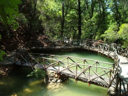 Gretsiyaostrov-Rodos-Park-babochek-500x377 (446x336, 67Kb)