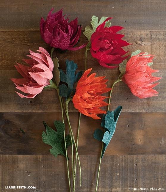 Осенние цветы из гофрированной бумаги. Шаблоны для распечатки (2) (558x646, 253Kb)