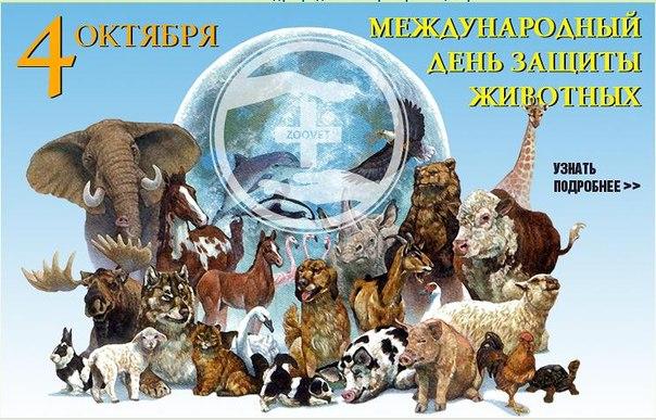 Сценарий дня защиты животных