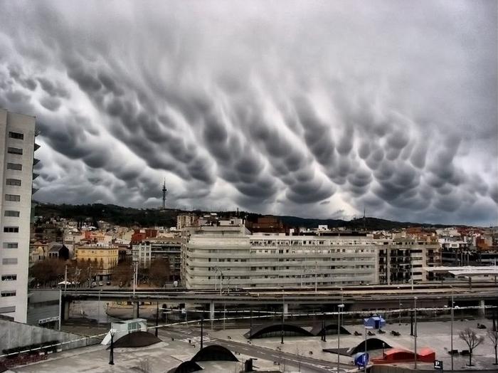 облака асператус фото 11 (700x524, 293Kb)