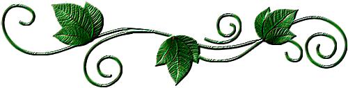 зеленая (500x127, 60Kb)