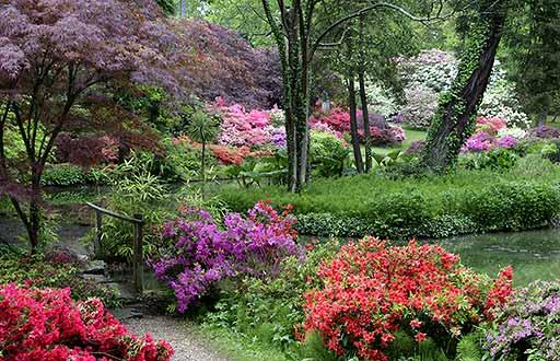 Exbury-Gardens (512x330, 285Kb)