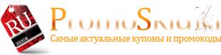 logo_promo (311x78, 17Kb)