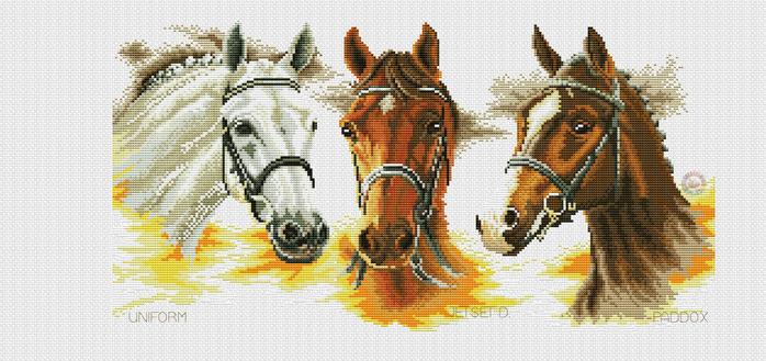 Drie paarden (700x329, 315Kb)