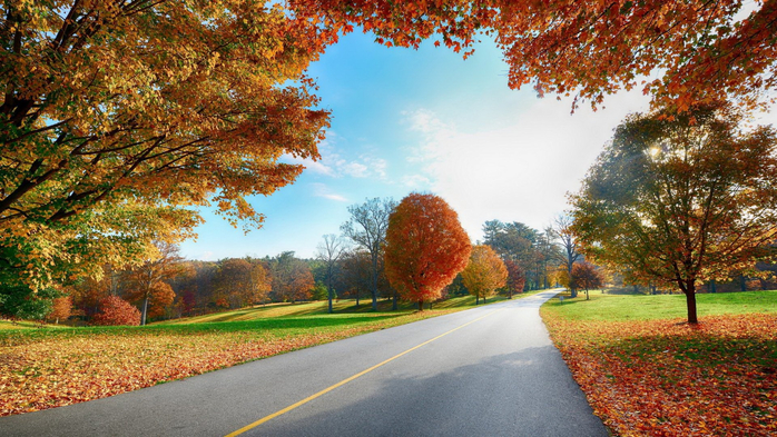 _Autumn_0056 (700x393, 472Kb)